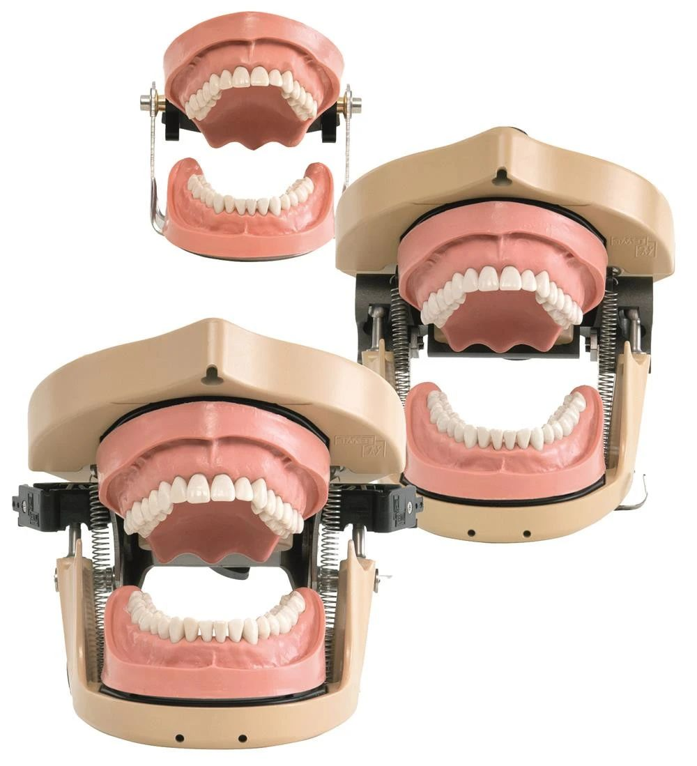 DSE Compact Dental Simulation Units