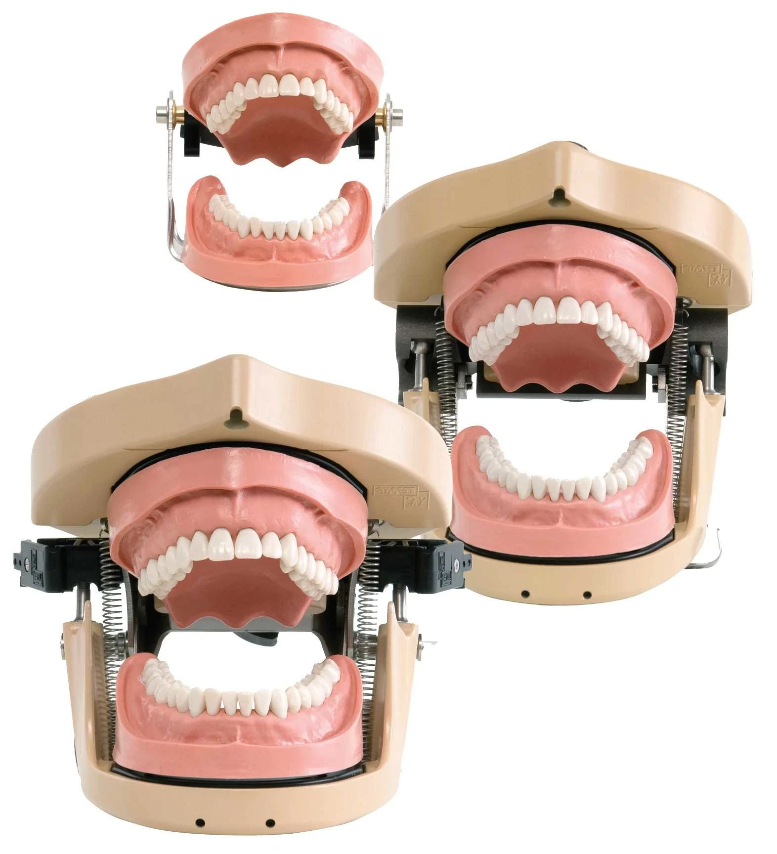 DSEclinical 5198 Dental Simulation Units