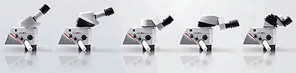 Leica M320 Microscopes